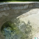 Kidney Swimming Pool Drained