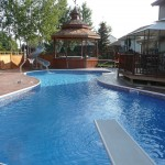 Free Form Swimming Pool Design Waterford, WI