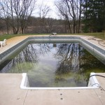 Old Dirty Vinyl Liner Pool