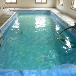 Old Vinyl Liner Prior to Getting Removed for Indoor Pool