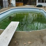 Dirty Water in Old Vinyl Liner needing Replacement in Sussex