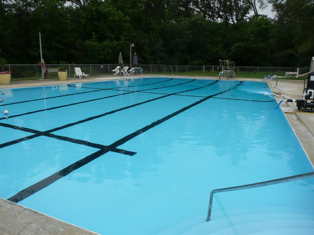 Penguin Pools Handles All Your Swimming Pool Services And