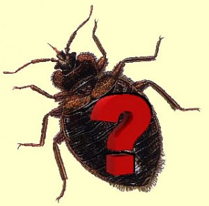 Tick and Mosquito Spraying FAQ Brookfield