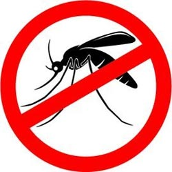 Mosquito Spraying Guarantee Merton